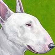 English Bull Terrier Profile On Green Print by Dottie Dracos
