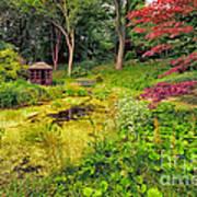 English Garden  Art Print by Adrian Evans