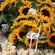 European Markets - Sunflowers And Roses Art Print