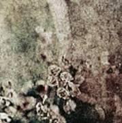 Evanescence Art Print