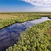 Everglades Waterway Art Print