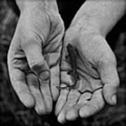 Explorer's Hands Art Print
