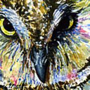 Eyes Of Owl's 13 Art Print