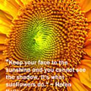 Face To The Sun Art Print