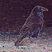 Faithful Raven Art Print