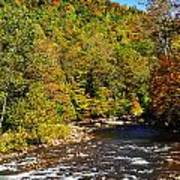 Fall Along Elk River Art Print
