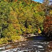 Fall Along Elk River Art Print by Thomas R Fletcher