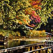 Fall At Tyler State Park Art Print