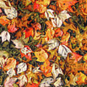 Fall Autumn Leaves On Water Art Print
