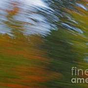 Fall Blur Art Print