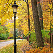 Fall Color And Lamppost Art Print