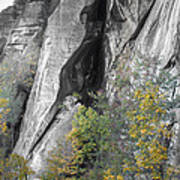 Fall Colors Chimney Rock State Park Art Print