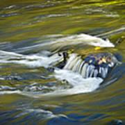 Fall Colors In River Rapids Art Print