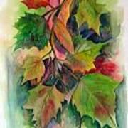 Fall Colors Art Print by John Smeulders