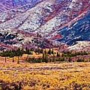 Fall Colours In Ogilvie Mountains Art Print
