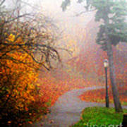 Fall Fog Art Print