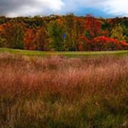 Fall Golf Art Print