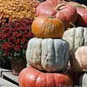 Fall Harvest Colorful Gourds 7968 Art Print