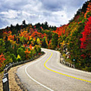 Fall Highway Art Print