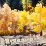 Fall In The Sierra Art Print