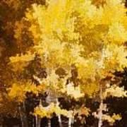 Fall In The Sierra II Art Print