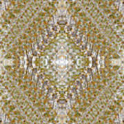 Fall Kaleidoscope Three Art Print