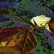 Fall Leaves Abstraction Art Print
