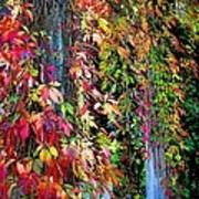 Fall Palette Art Print