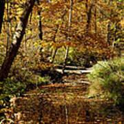 Fall River Colors Art Print