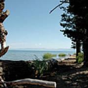 Fallen For Lake Tahoe Art Print