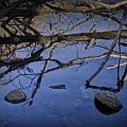 Fallen Tree Trunk With Reflections On The Muskegon Rive Art Print