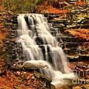 Falls In The Woods Art Print