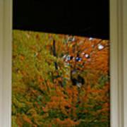 Fall's Reflective Moment Art Print