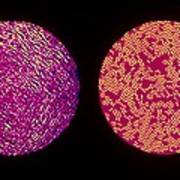 False Colour Tem And Fingerprint Of Soot (air) Art Print by Copyright 1994 A.palotas, A.sarofim & J.vander Sande