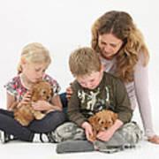 Family With Cockerpoo Pups Art Print