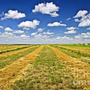 Farm Field At Harvest In Saskatchewan Art Print