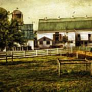 Farmland In Intercourse - Pennsylvania Art Print