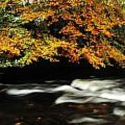 Fast Flowing Water And Fall Colours Art Print