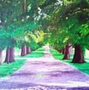 Fdr's Driveway Art Print