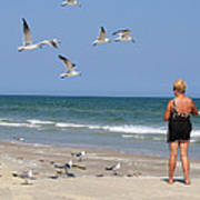 Feeding The Sea Gulls Art Print