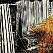 Fence Abstract Art Print