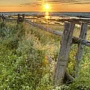 Fence Along The Shore Art Print