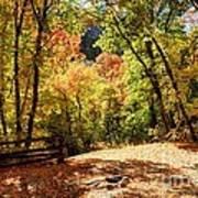 Fenced Path Through Autumn Forest - Blacksmith Fork Canyon - Utah Art Print