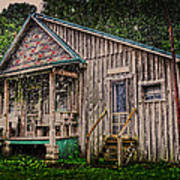 Ferndale Country Store Art Print