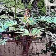 Feuilles Kyoto Art Print