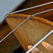 Fiddle Strings Art Print