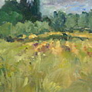 Field In Italy Art Print