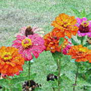Field Of Flowers Impressionism Art Print