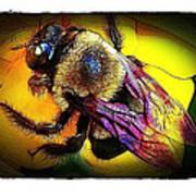 Fierce Bumblebee Art Print