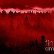Fiery Forest  Art Print